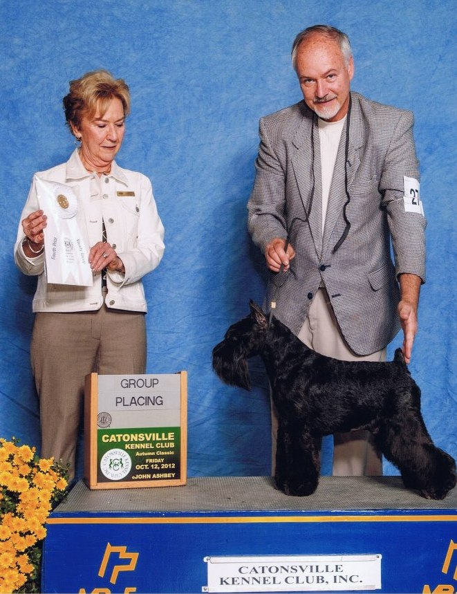 GCH. Dreams Don't Skip Liberty (aka 'Howie') finished his Grand Championship with a Group Four under Judge Marjorie Underwood. Howie is owned by Kim Griffin (Daystar MS) and bred by Sharon Hamilton.